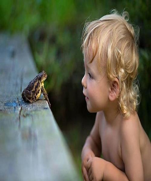 boy & frog